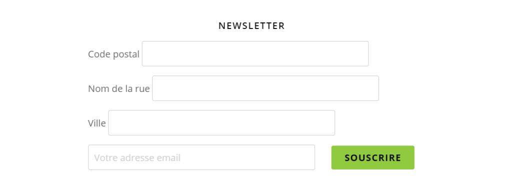 inscription à la newsletter erreur marketing digital